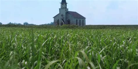 'In The Tall Grass' Review: Netflix's New Stephen King
