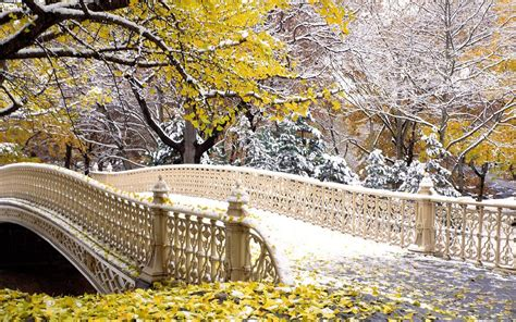 Fall Central Park New York Wallpapers | HD Wallpapers | ID